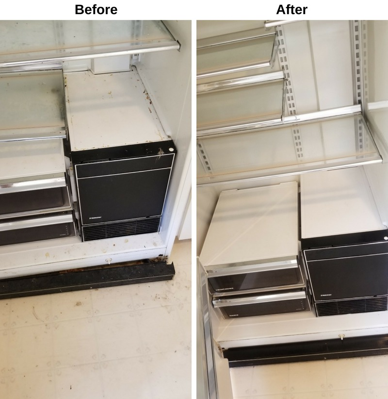 Refrigerator Before and After